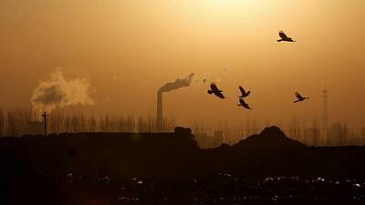 Analysis-Europe faces sceptical globe with carbon border levy