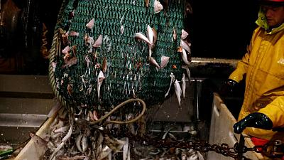 World fisheries deal 'within reach' but improvements needed, says U.S