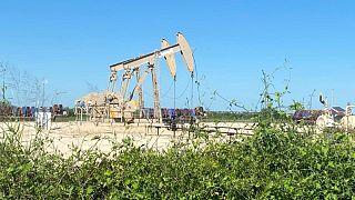 وكالة حكومية: إنتاج النفط الصخري الأمريكي من المتوقع أن يرتفع إلى 7.907 مليون ب/ي في أغسطس