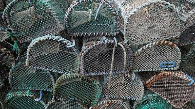 UK fisheries sold out in Brexit deal, industry body says