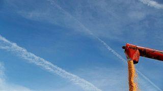 GRANOS-Maíz y soja suben ante la preocupación por el clima en EEUU