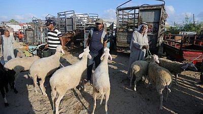 بعد الحرب مع إسرائيل .. الحزن يغلف فرحة العيد في غزة