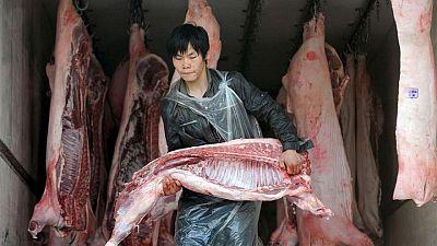 El control de la peste porcina africana en China sigue siendo complicado
