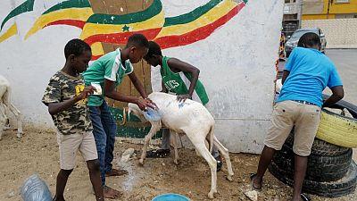 Senegal's COVID-19 surge forces difficult Eid al-Adha decisions