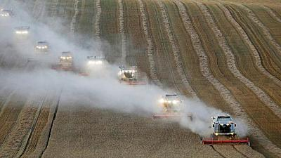 Putin's drive to tame food prices threatens grain sector