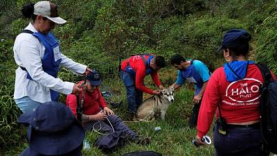 Colombian children learn to identify landmines buried during country's civil war