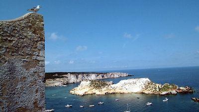 'Eccellente' il 99,9% delle acque, poi Sardegna e Toscana(98,5%)