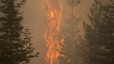 La sombra causada por humo de incendios forestales ayuda a bomberos a combatir el mayor foco de EEUU