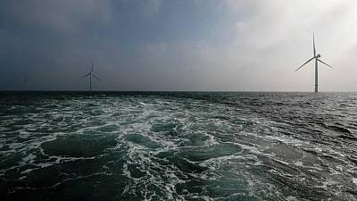 Exclusive: U.S. studies plan to pay fishing industry for offshore wind impacts