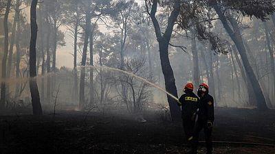 Las llamas arrasan la isla de Eubea en el sexto día de incendios forestales en Grecia