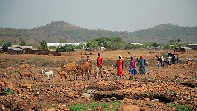 Etiopía insta a los ciudadanos a alistarse en el ejército mientras se extiende el conflicto