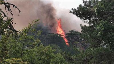 La strada per la Madonna di Polsi lambita dalle fiamme