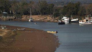 Histórica sequía en Brasil seguiría afectando exportaciones granos de Argentina en 2022
