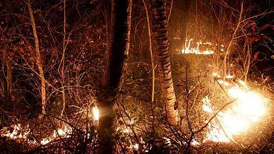 Incendios arrasan más de 150.000 hectáreas de bosque en Bolivia
