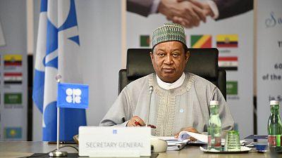 Le Secrétaire Général de l'OPEP souligne la Valeur du Secteur Pétrolier de l'Afrique lors d'une Visite d'Etat Historique au Congo-Brazzaville