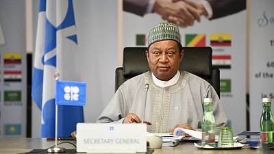 OPEC Secretary General Emphasizes the Value of Africa's Oil Sector in Historic State Visit to Congo-Brazzaville