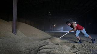 Exportaciones de granos de Ucrania en 2021/22 aumentarán a 57 millones de toneladas: APK-Inform
