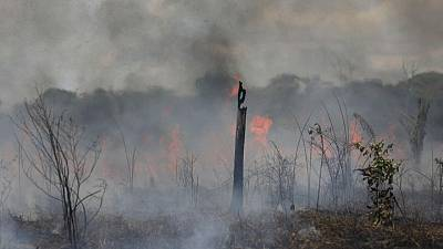 Amazon fires surge anew in Brazil as cleared forest burns