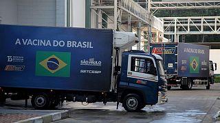 البرازيل تعلق استخدام 12 مليون جرعة من لقاح سينوفاك الصيني