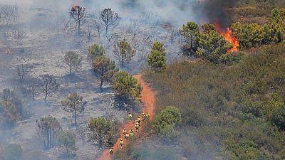 Un incendio en el sur de España obliga a huir a 500 personas