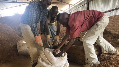 Burundi : une usine de briquettes, financée par la Banque africaine de développement, renforce la résilience et la cohabitation dans un camp de réfugiés