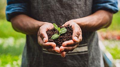 Nestlé dévoile ses plans pour soutenir la transition vers un système alimentaire régénérateur