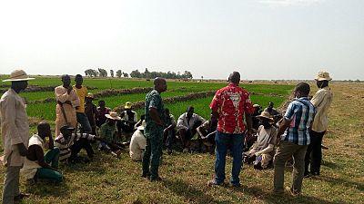 Bénin : un projet agricole financé par la Banque africaine de développement renforce la résilience des populations dans le nord-est du pays