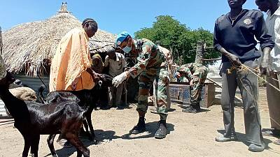 Free veterinary camp by UNMISS peacekeepers from India wins hearts and minds in Renk